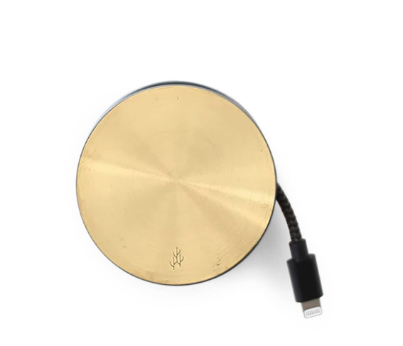 2.Mini Dual USB Wall Charger.